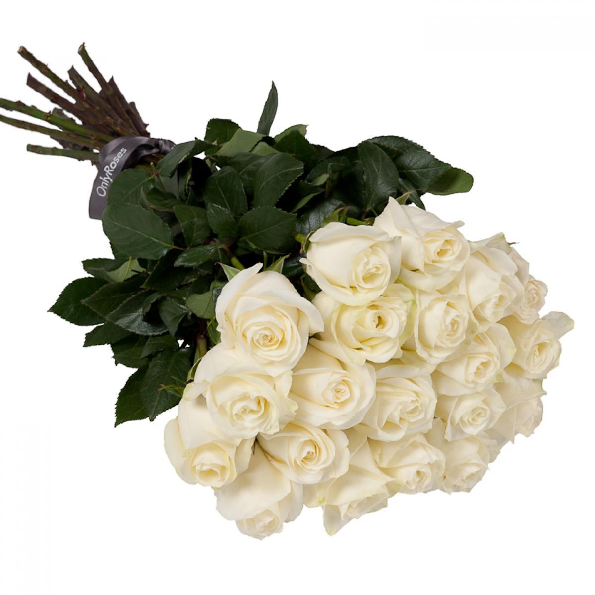Букет от 11 до 15 бели рози (ти избираш броя)