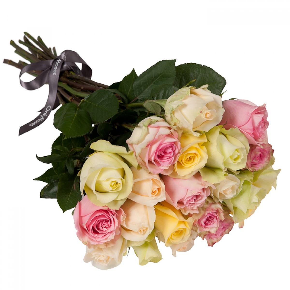 Букет от 25 до 51 рози в рози в пастелна гама (ти избираш броя)