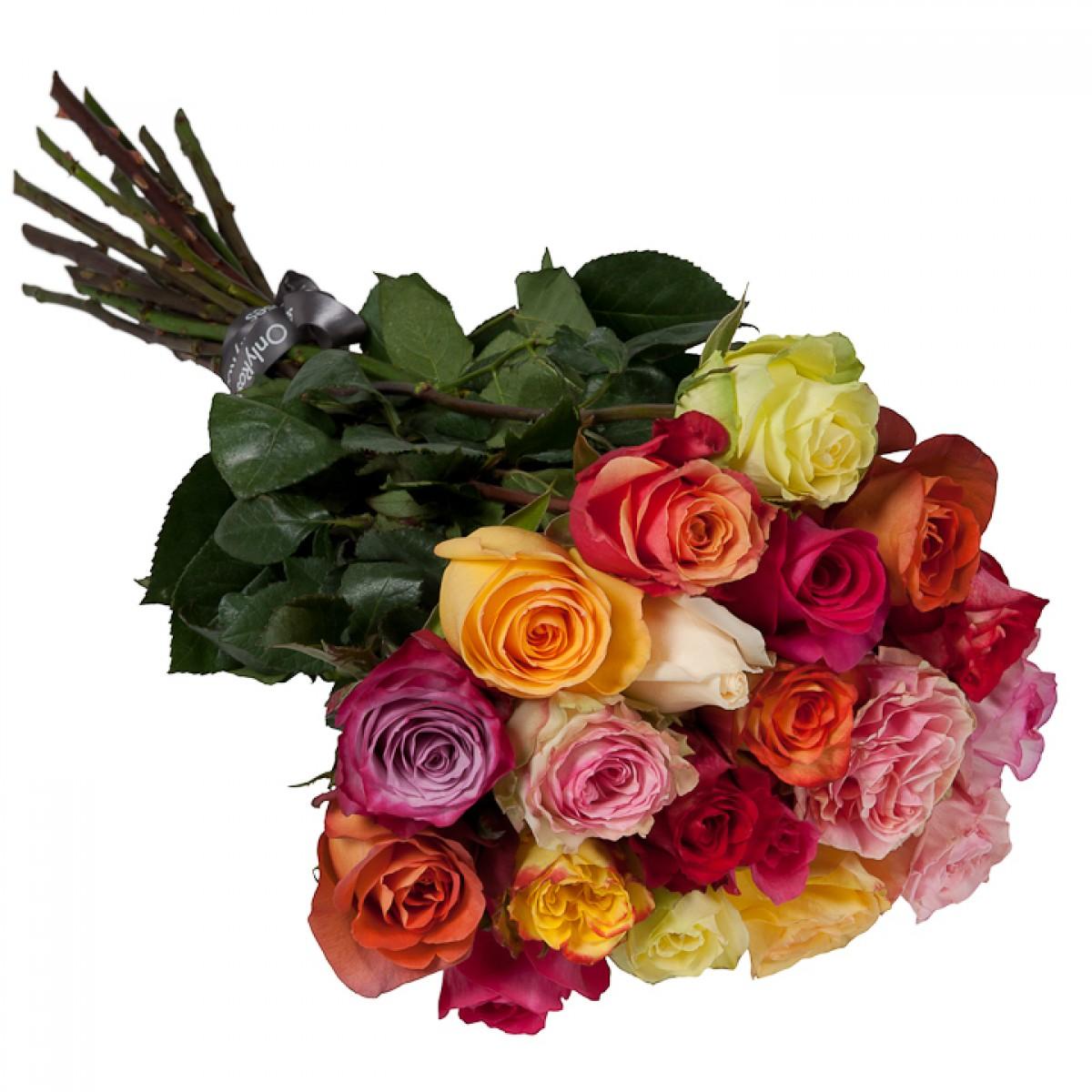 Букет от 25 до 51 рози светъл микс (ти избираш броя)