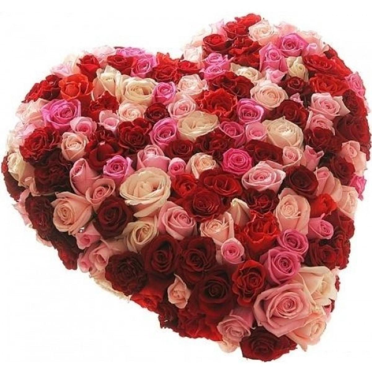 Сърце от 101 Рози Микс