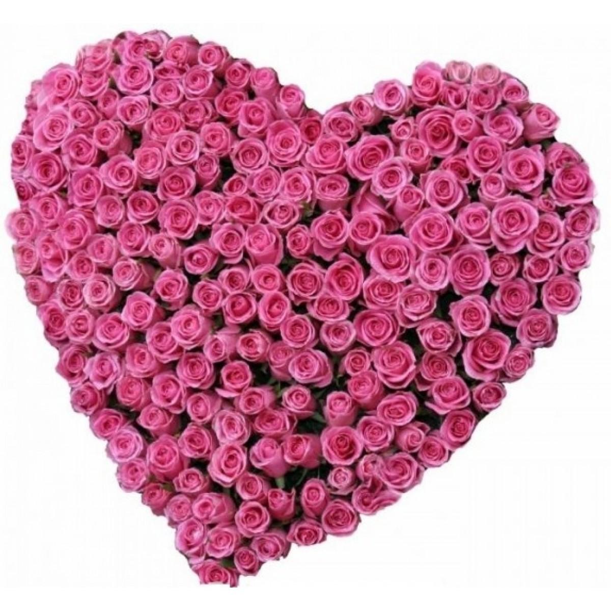 Сърце от 101 Розови Рози